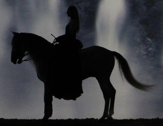 Cavalia Odysseo Elegantly Gallops Into Opryland